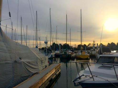 IMG_7543 vancouver island
